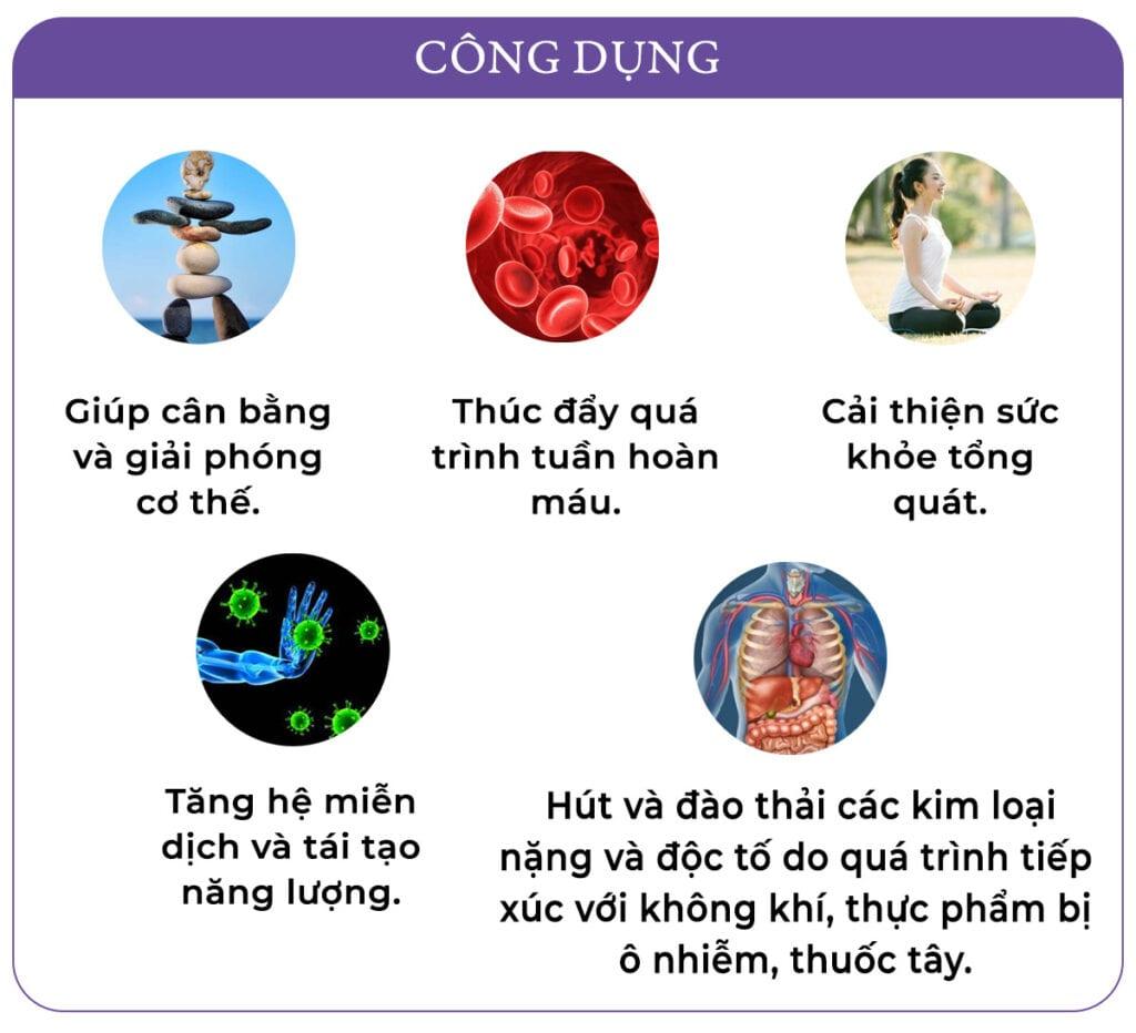 Inforgraphic Cao Dan Lavendermota copy 3