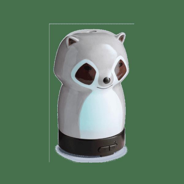 racoon optimized